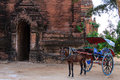 Horse cart bagan in myanmar burmar and pagoda Royalty Free Stock Image