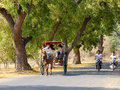 Horse cart carrying tourists on the rural road in bagan myanmar located banks of ayeyarwady irrawaddy river is Royalty Free Stock Images
