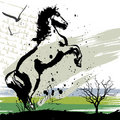 Horse design vector Stock Photography