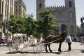 Horse-drawn carriage in front of Notre-Dame Basilica in Montreal Royalty Free Stock Photo