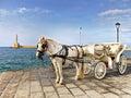 Horse drawn carriage rides in chania crete island Stock Photos