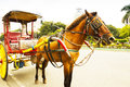 Horse drawn carriage at roman catholic basilica a the most popular forms of transportation in front of manila metropolitan Stock Photography