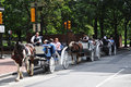 Horse drawn carriage tours in Philadelphia Royalty Free Stock Image