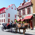 Horse drawn carriage tours on rue saint louis quebec city quebec canada Royalty Free Stock Photo