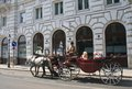 Horse drawn carriage vienna aus with tourists on the streets of austria Stock Images