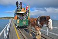 Horse drawn tram driver controlling the Clydesdale horse along the causeway from seaside Granite Island to Victor Harbor Royalty Free Stock Photo