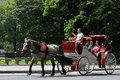Horse-drawn vagnsritter i Central Park Royaltyfri Foto