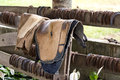 Horse equipment old torn equimpent on a fence Royalty Free Stock Photo