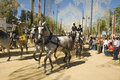 Horse Fair in Jerez, Cadiz Spain Royalty Free Stock Photo