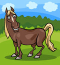 Horse farm animal cartoon illustration of funny comic Royalty Free Stock Images