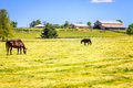 Horse farm scenic image of a with stables and pasture Stock Photography