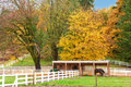 Horse farm with white fence and fall colorful leaves northwest rach changing Royalty Free Stock Images