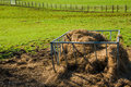 Horse feeder Royalty Free Stock Photo