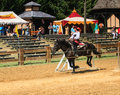 Horse Female Equestrian MD Renaissance Festival Royalty Free Stock Photography
