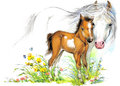 Horse and foal motherhood. background greetings illustration Royalty Free Stock Photo