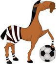 Horse the football player Stock Photos