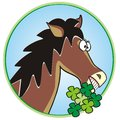 Horse fun horsehead and clover humorous illustration Stock Photography