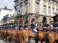 Horse guards on parade row of during the st of july national day celebrations near parliament in brussels belgium Royalty Free Stock Image