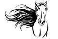 Horse hand drawn vector llustration realistic sketch Royalty Free Stock Photo