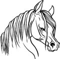Horse head for coloring book.
