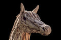 Horse head. Royalty Free Stock Photo