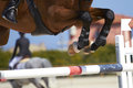 Horse jump Royalty Free Stock Images