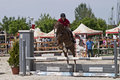 Horse jump at the equitation contest in bucharest Stock Photo