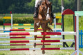 Horse jump a hurdle Stock Photography