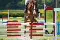 Horse jump a hurdle Stock Photography