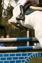 Horse Jumping 015 Royalty Free Stock Photo
