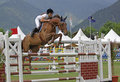 Horse jumping Stock Photo