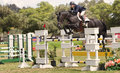 Horse jumping competition del mar california a and rider jump over an obstacle on a course in an equestrian riding show in the Stock Photo