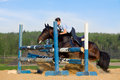 Horse jumping stopped young girl on bay riding horseback Stock Image