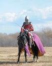 The horse knight Royalty Free Stock Photo