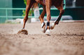 Horse legs Running Stock Photo
