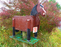 Horse letterbox a found in the country Stock Images