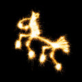 Horse made a sparkler on black background Stock Image