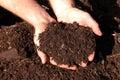 Horse Manure Compost