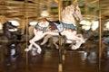 Horse merry-go-round Royalty Free Stock Photo