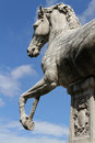 Horse by michelangelo capitoline hill the design of the piazza del campidoglio and the surrounding palazzi was created renaissance Stock Image