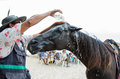 Horse and owner man cleaning his on the beach Stock Photos
