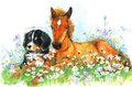 Horse and and puppy. background with flower. illustration