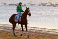 Horse race on Sanlucar of Barrameda, Spain, August  2011 Royalty Free Stock Photos