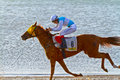 Horse race on Sanlucar of Barrameda, Spain, August  2011 Stock Image
