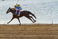 Horse race on Sanlucar of Barrameda, Spain, August  2011 Royalty Free Stock Image