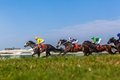 Horse racing action grass angle photo low visual image of as horses and jockeys pound the green towards the finish line and Stock Photo