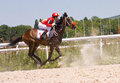 Horse racing action shot of jockeys in race northern caucasus Stock Images