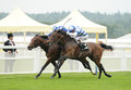 Horse racing al kazeem st near side and mukhadram nd far side ascot Stock Photos