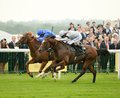 Horse racing dawn approach st blue and toronado nd grey red ascot Stock Images