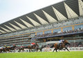 Horse racing gale force ten st in the leed ascot Stock Images